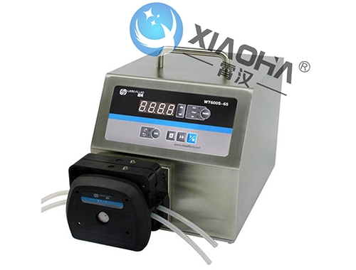 WT600S-65高防护调速型蠕动泵DT泵头